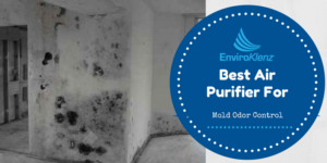 Best Air Purifier For Mold Odor Control