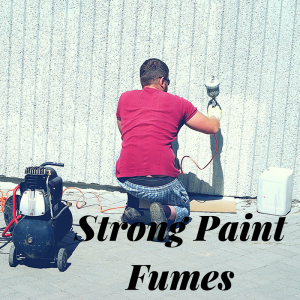 Get Rid of Paint Smell & Fumes Fast | Safe Paint Odor Eliminators