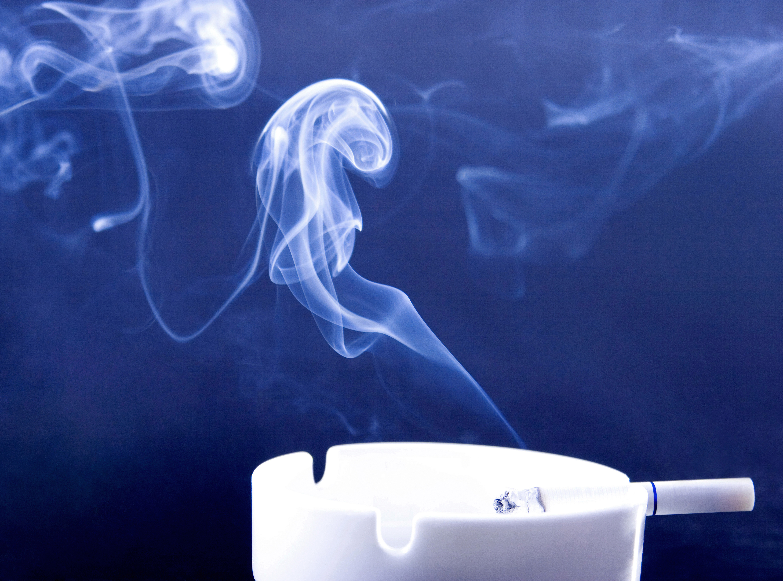 Best air purifier for cigarette smoke enviroklenz