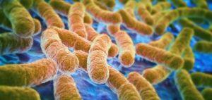 Unbalanced microbiome