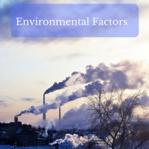 Environmental Factors Contributing to Hashimoto's Thyroiditis