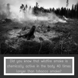 What is Fire Smoke Made Of?