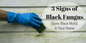 3 Signs of Black Fungus (Toxic Black Mold) in Your Home