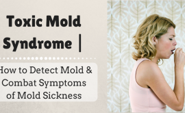 Toxic Mold Syndrome | How to Detect Mold & Combat Symptoms of Mold Sickness