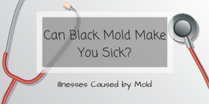 Can Black Mold Make You Sick? Illnesses Caused by Mold
