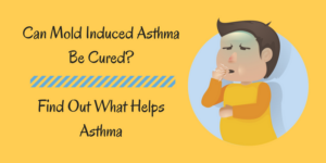 Can Mold Induced AsthmaBe Cured_Find Out What Helps Asthma