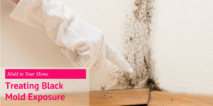 Mold in Your Home & Treating Black Mold Exposure