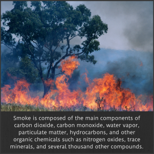 Wildfire air pollution