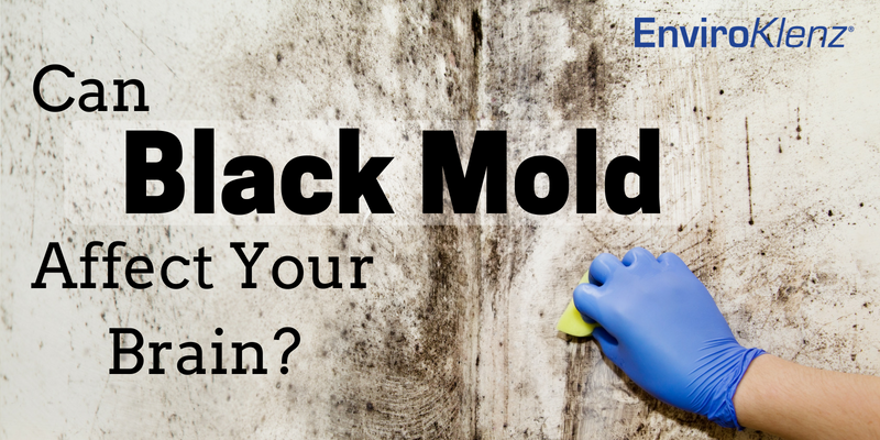 Can Black Mold Affect Your Brain
