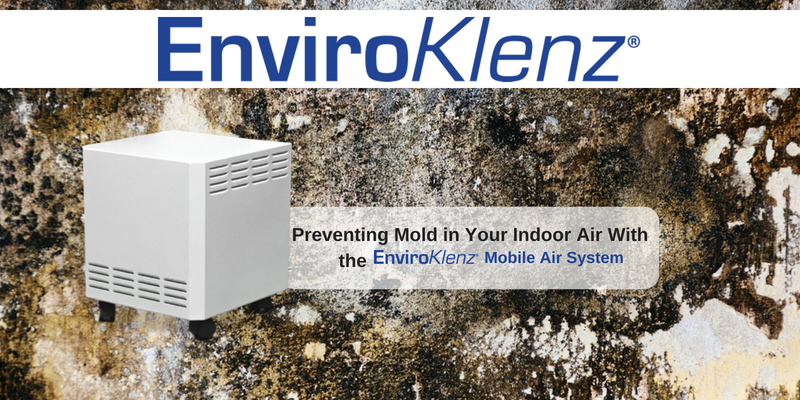 Preventing Mold in Your Indoor Air