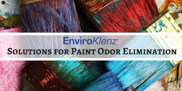 Solutions for Paint Odor Elimination