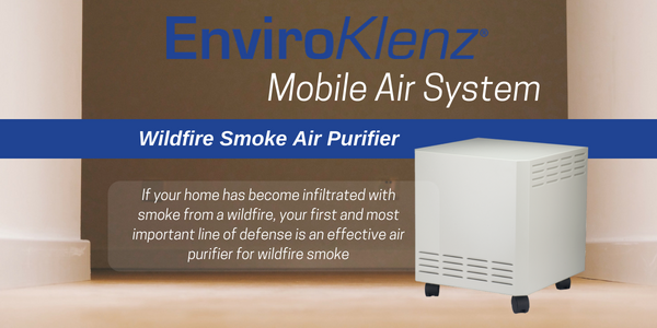 Wildfire Smoke Air Purifier