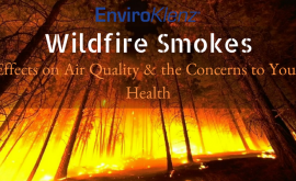 Wildfire Smokes Effects on Air Quality & the Concerns to Your Health