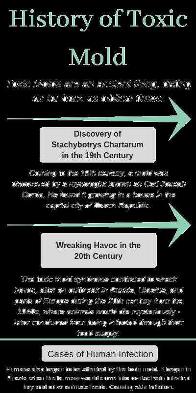 History of Toxic Mold