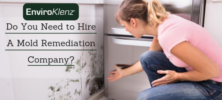 Do You Need to Hire A Mold Remediation Company