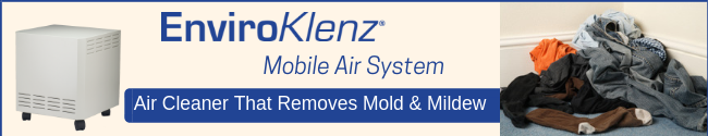 Air Cleaner that removes mold & Mildew