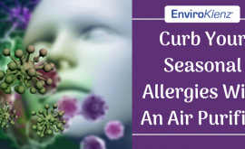 Curb Your Seasonal Allergies With An Air Purifier