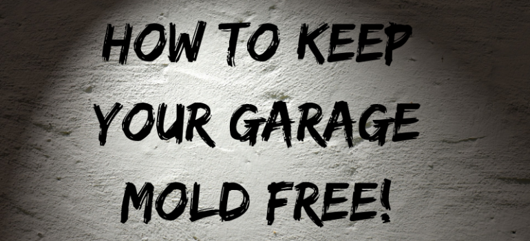 How to Keep Your Garage Mold Free!