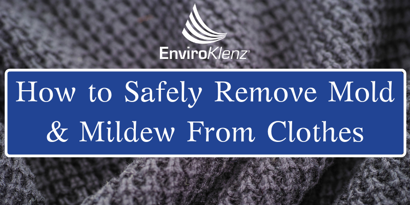 How To Safely Remove Mold And Mildew From Clothes | Enviroklenz