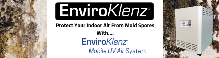 Protect Your Indoor Air From Mold Spores With....