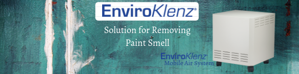 Solution for Removing Paint Smell