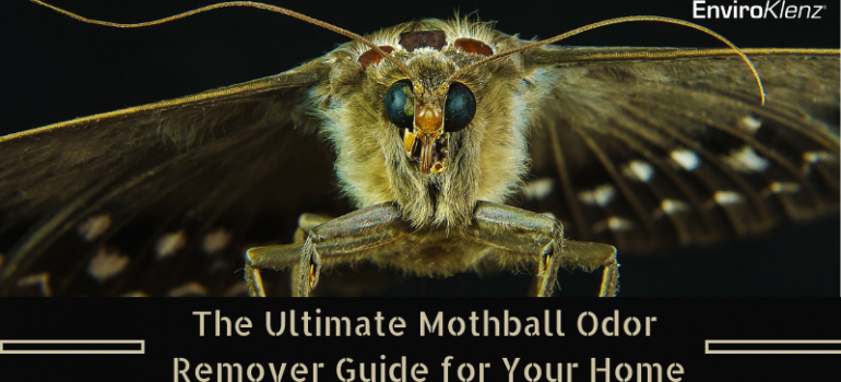 The Ultimate Mothball Odor Remover Guide for Your Home