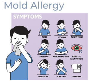 Signs of Mold Allergy